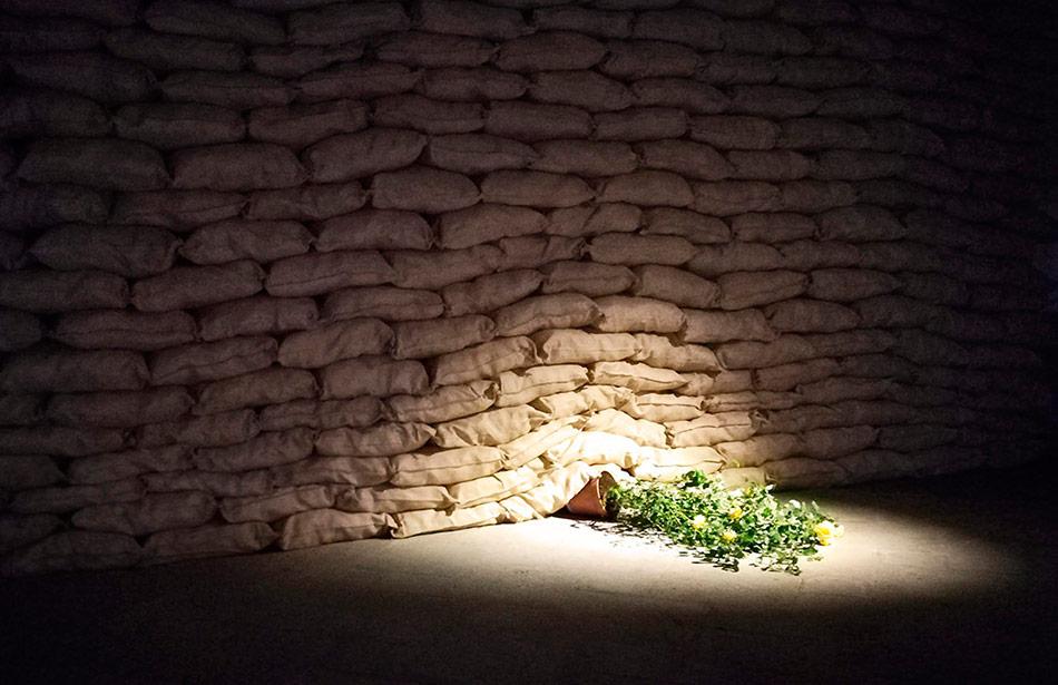 SP25 Arquitectura efímera Temps de Flors Girona 2018 flor