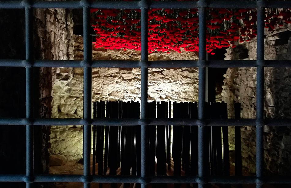 SP25 Arquitectura efímera Temps de Flors Girona 2018