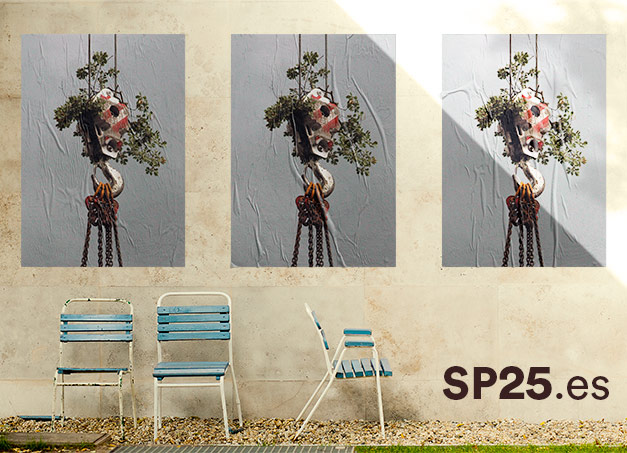 SP25 ARQUITECTURA estrenem nova web